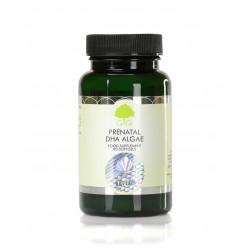 Prenatal DHA Algae